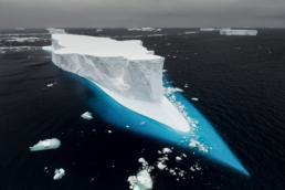Adrift - Paul Nicklen copy