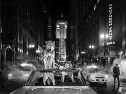 David_Yarrow_Chicago _Board_of_Trade_Hilton_Asmus_Contemporary
