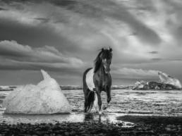 David_Yarrow_On_the_Rocks_Hilton_Asmus_Contemporary