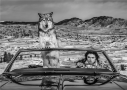 David_Yarrow_The_Richest_Hill_in_the_World_Hilton_Asmus_Contemporary