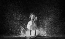 David_Yarrow_The_Shape_of_Water_Hilton_Asmus_Contemporary