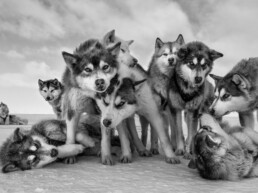 Lifestyle of the Greenlandic Hunters