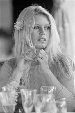 Terry_O_Neill_Brigitte_Bardot_Shalako_1968_Hilton_Asmus_Contemporary copy
